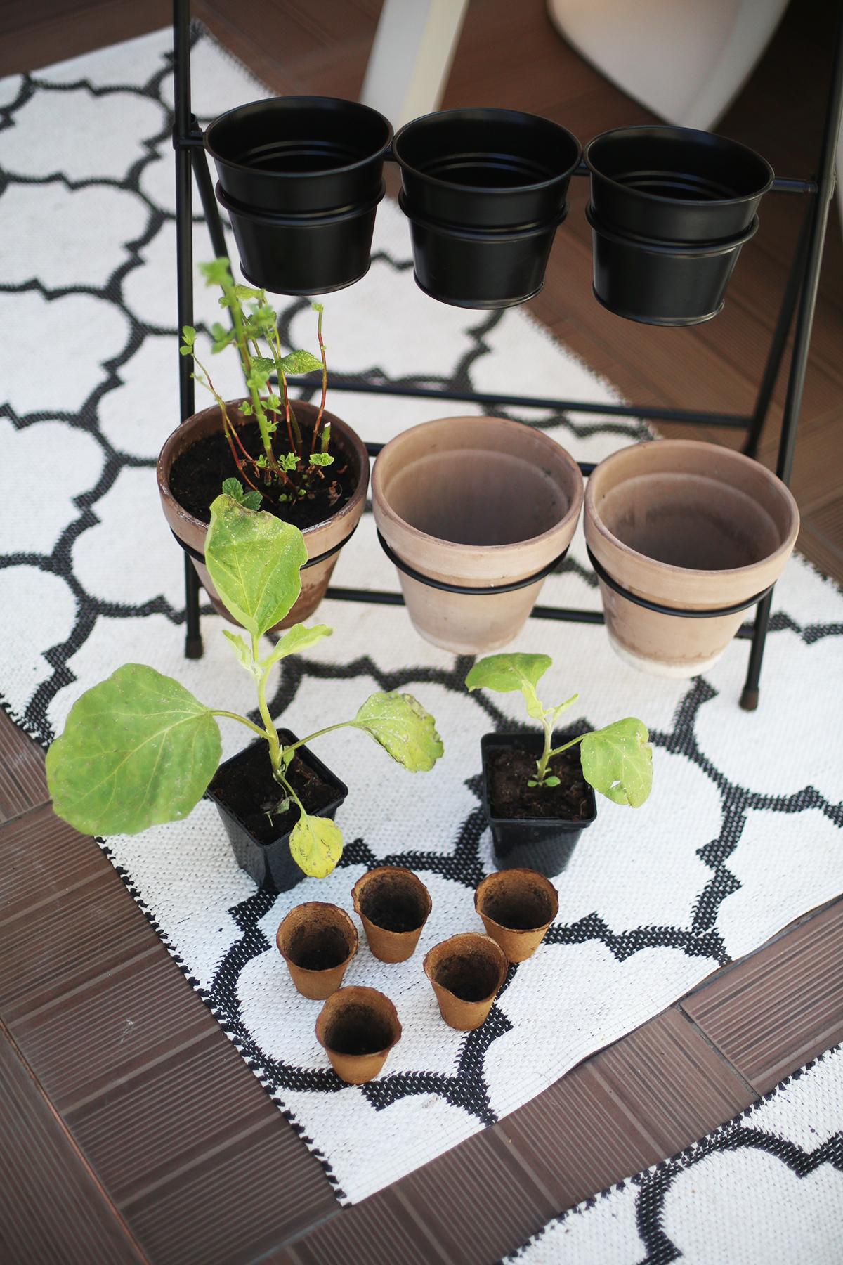 Avec Sofié Blog l Gardening
