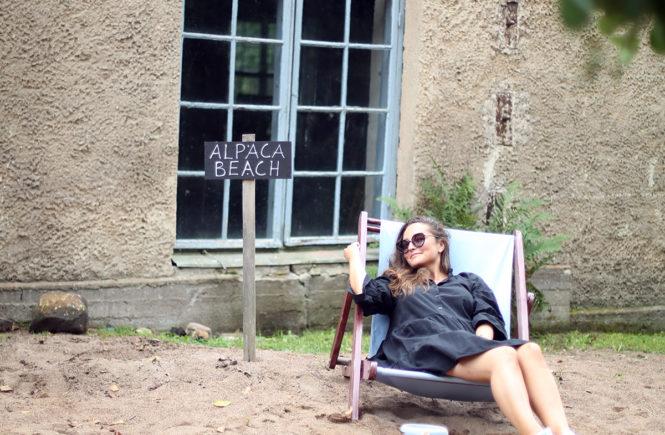 Avec Sofié Blog l Mathildedal ja alpakka